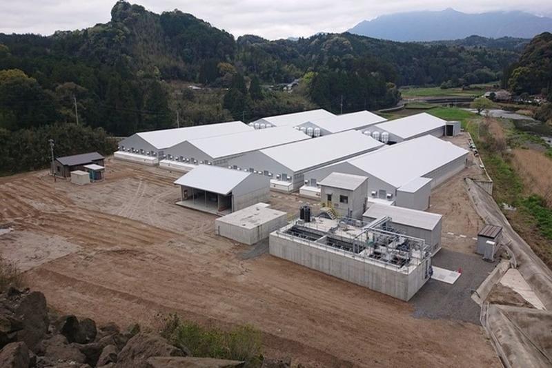 ㈱鹿児島農場新肥育豚舎建設工事
